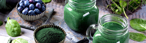 Wildly Nutritious Green Smoothie