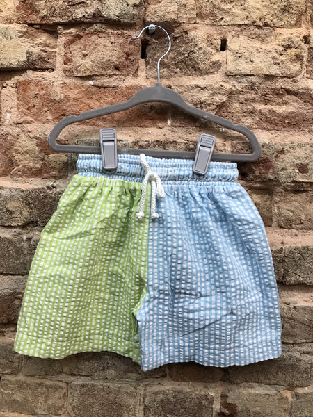 Three Sisters Turquoise/Lime Gingham Swim Trunks