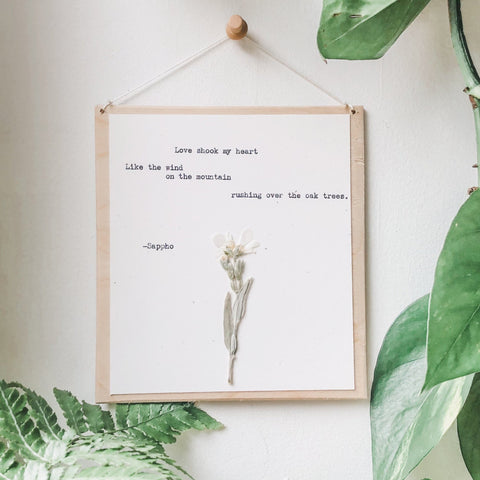 sappho, love shook my heart quote typed in typewriter font on white paper, mounted on birch wood and paired with a pressed flower. handmade décor by flora & phrase