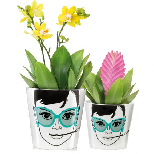 donkey-products-flower-power-plant-pot-elegant-audrey