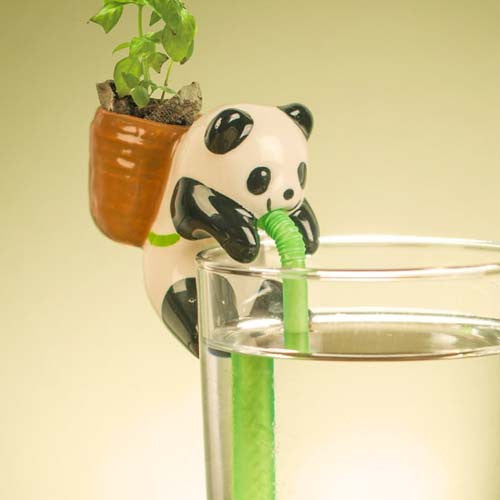chuppon-animal-self-watering-plants