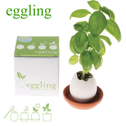 eggling-crack-and-grow