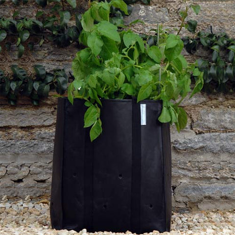 potato-planting-bag-2-pack