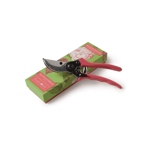 secateurs-gift-boxed