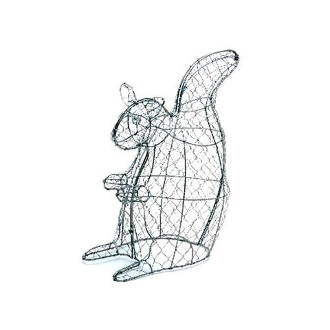 Burgon & Ball Squirrel Topiary Frame