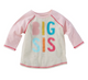 Mud Pie Big Sister Shirt and Pennant Set