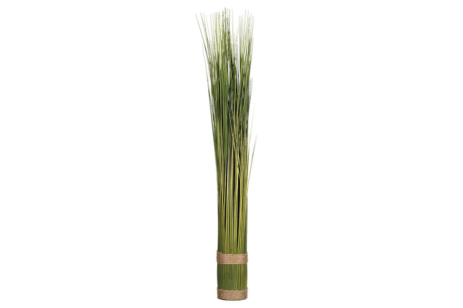 GRASS BUNDLE - PLANT
