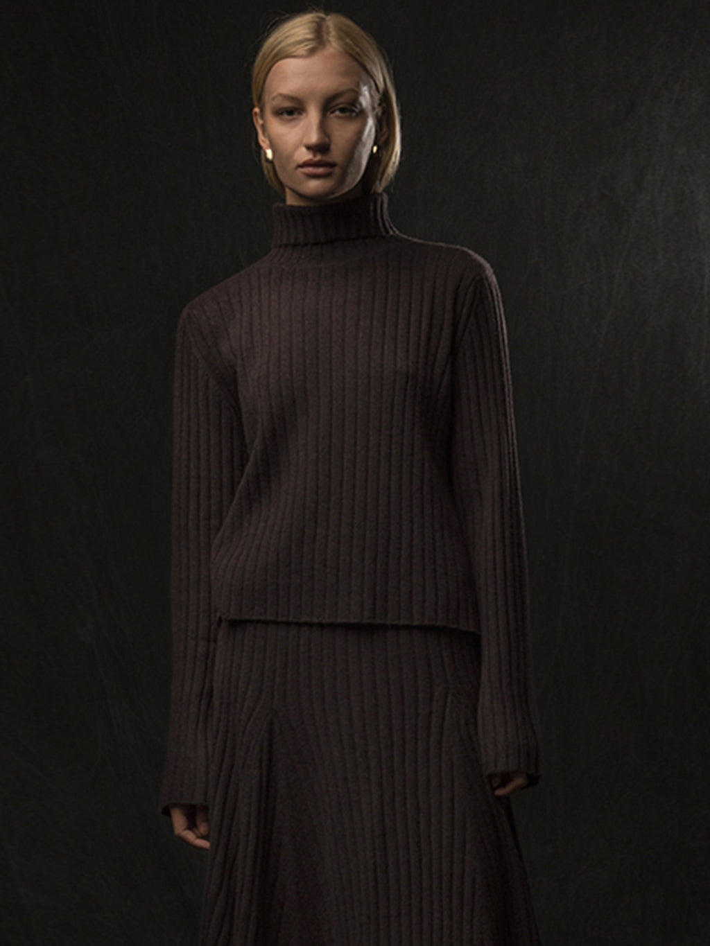 Turtleneck Rib Sweater_Castle Brown