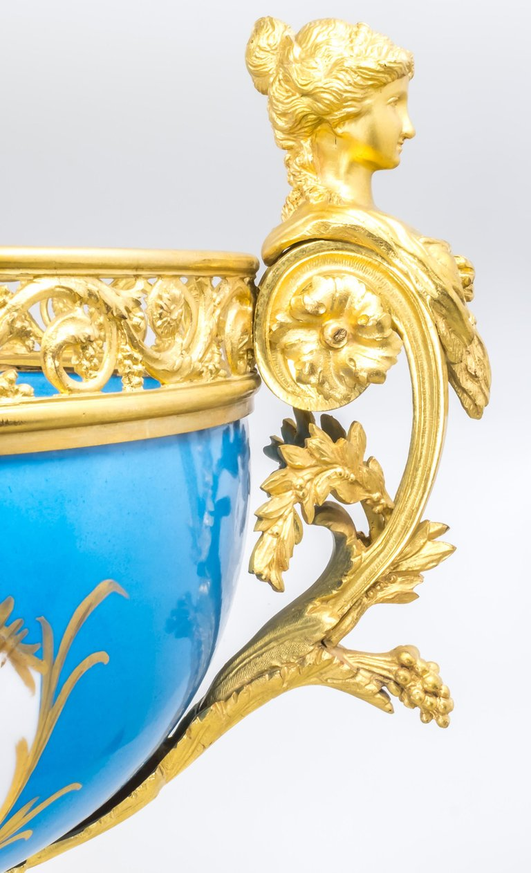 French Sèvres Porcelain in Gilt Bronze Mount, Hand-Painted, France,6