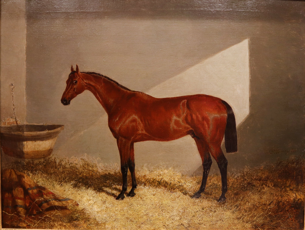 Bloomsbury - Winner of the Derby, by  John Frederick Herring
