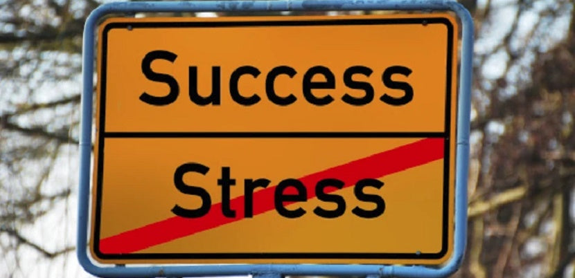 How To Turn Your Stressors into Success