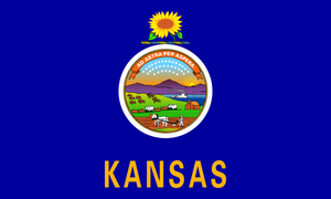 Kansas State Flag Wall Art - Down Home Products