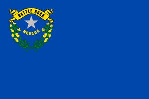 Nevada State Flag Wall Art - Down Home Products