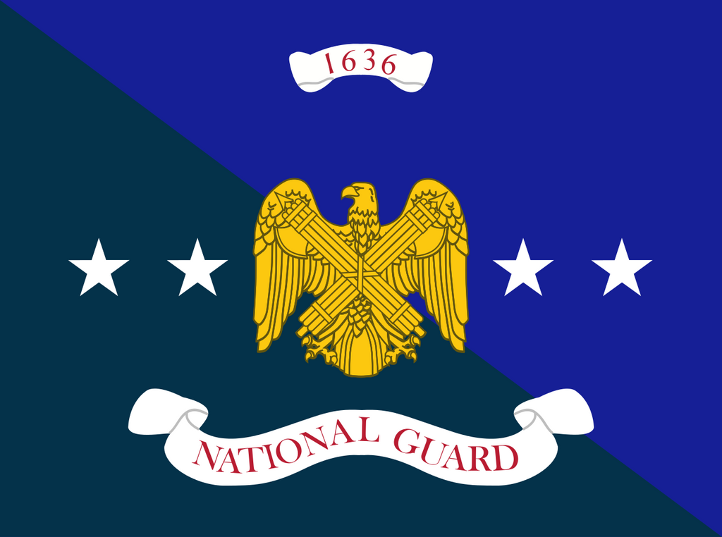 National Guard Flag Wall Art - Down Home Products