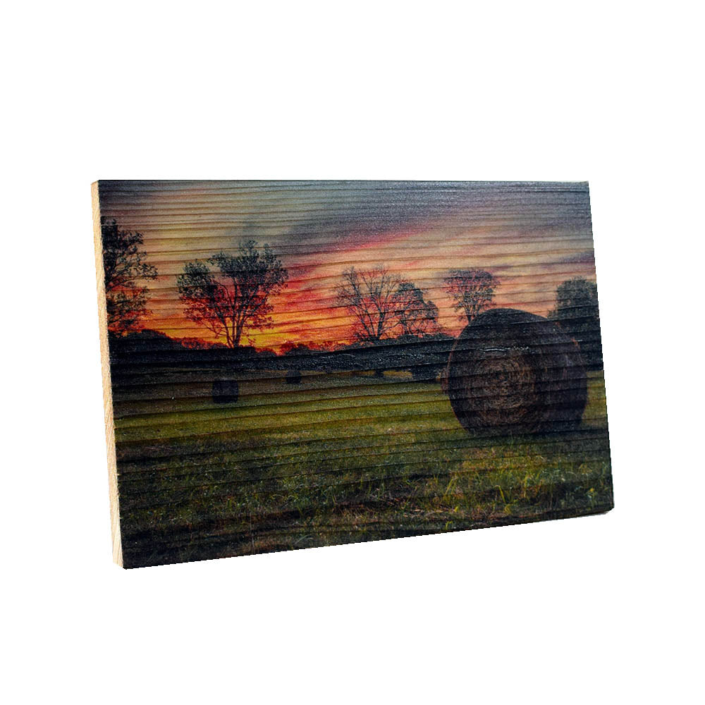 Wall Art Hayfield At Sunset - Down Home Products