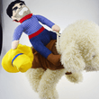 Load image into Gallery viewer, Dog Costume - Cowboy Rider