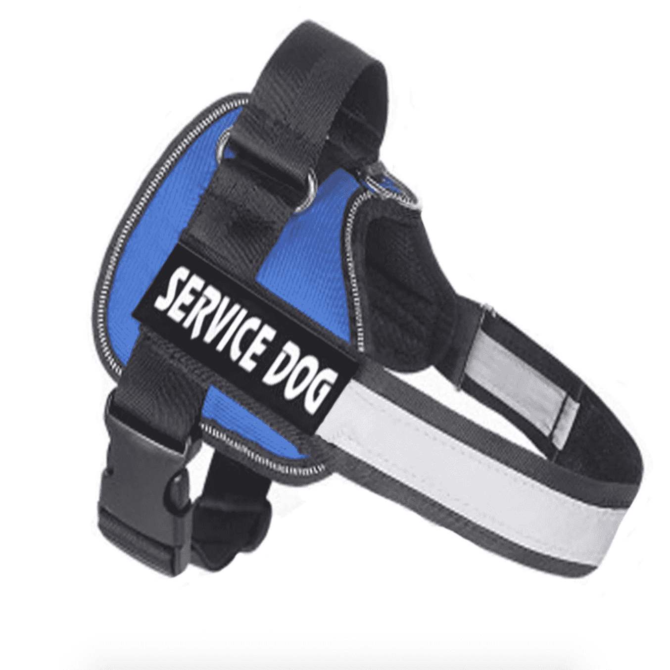 Personalized Custom Dog Harness