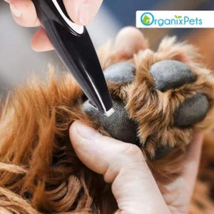 Low Noise Electric Pet Grooming-Pet Local Trimmer