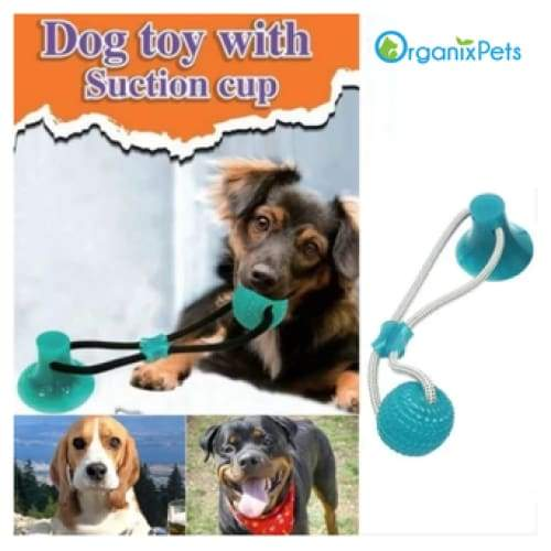 OrganixPets Flexible Dog Tug Toy - Green