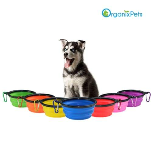 Portable & Collapsible Silicone Dog Travel Bowl