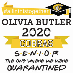 Graduation Yard Signs (Customized for your grad!)