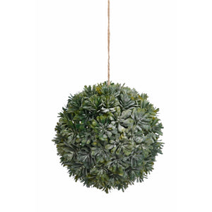 "6"" Hanging Sedum Ball with Rope in Green"