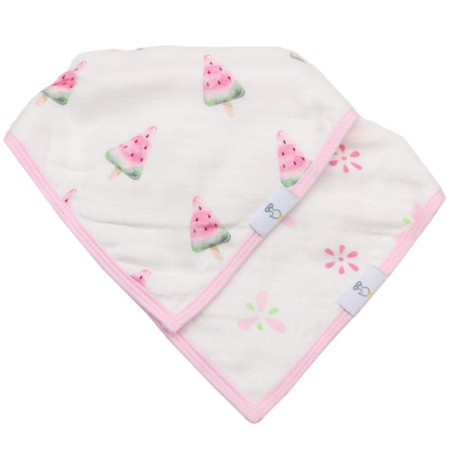 Muslin & Terry Cloth Bib Set- Watermelon & Popsicle