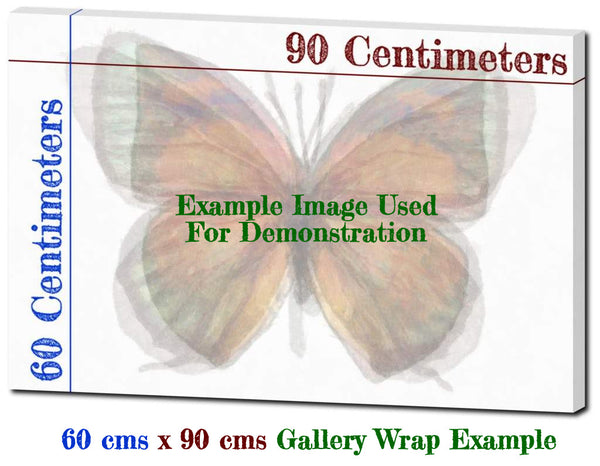 Butterfly Linen Canvas HD Print - Yairotateha