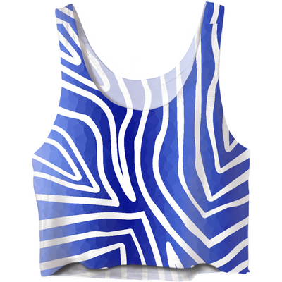 Zebra Stripes Blue And White Crop Top