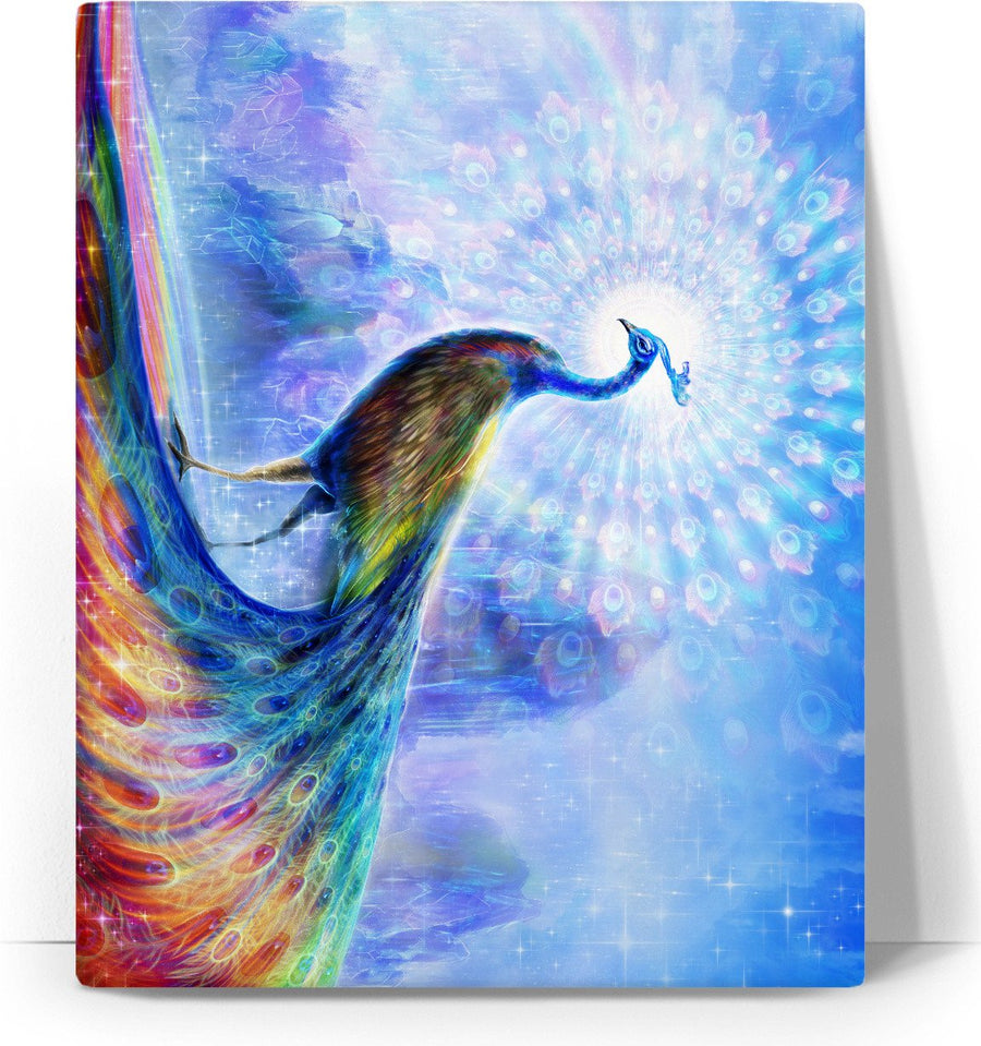 The Peacock Spectrum Canvas
