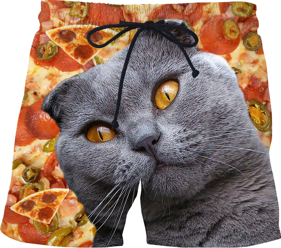 Cat and Pizza