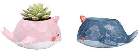Monmob 2Pcs/Set Narwhals Planter Pot Narwhal Shaped Planter Succulent Pot Pen Pencil Holder Pot Storage Container Decoration Accessories Home Office School Gift