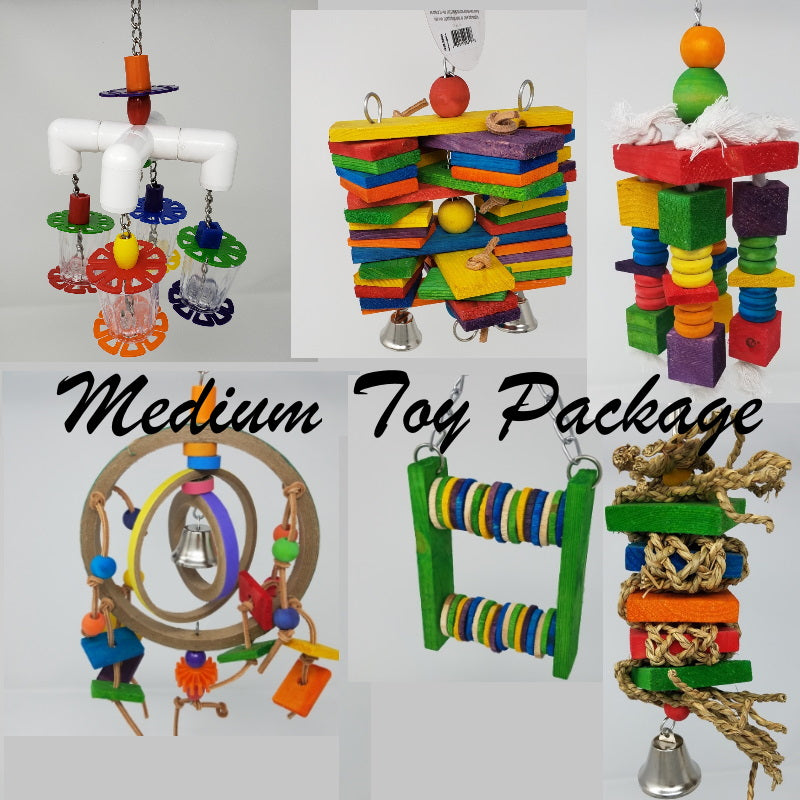 Medium Toy Package