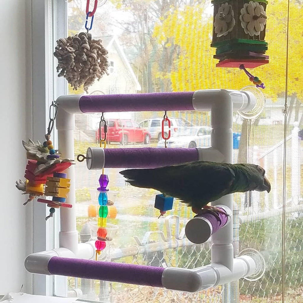 THE ULTIMATE OBSERVER - Window Play Gym for Medium and Large Birds