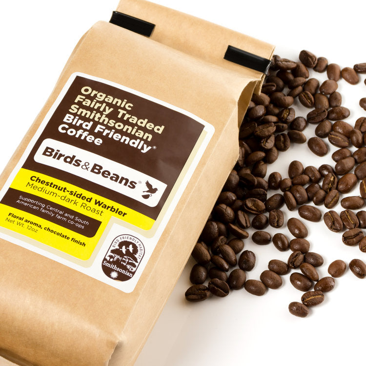 Chestnut-Sided Warbler, Dark Medium Roast - 12 ounces