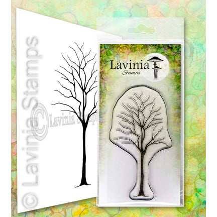 Birch by Lavinia Stamps