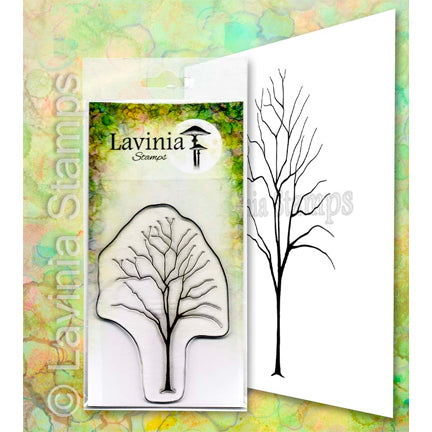 Elm by Lavinia Stamps