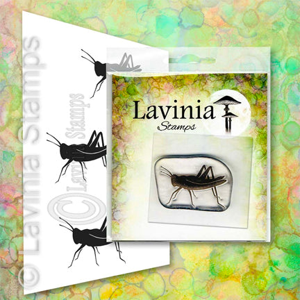 Jiminy (Miniature) by Lavinia Stamps