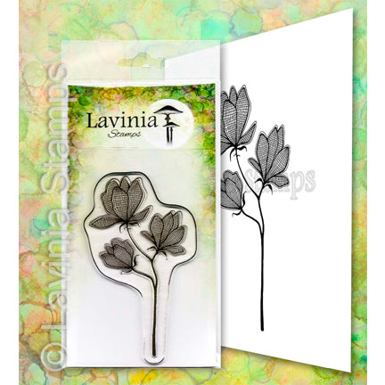 Lilium by Lavinia Stamps