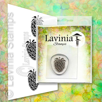 Mini Blackberry (Miniature) by Lavinia Stamps
