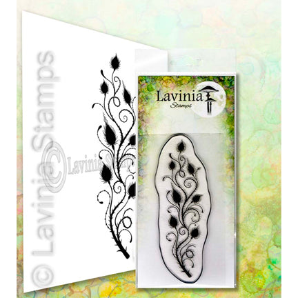 Thistle by Lavinia Stamps