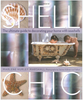Shell Chic - Signed Copy