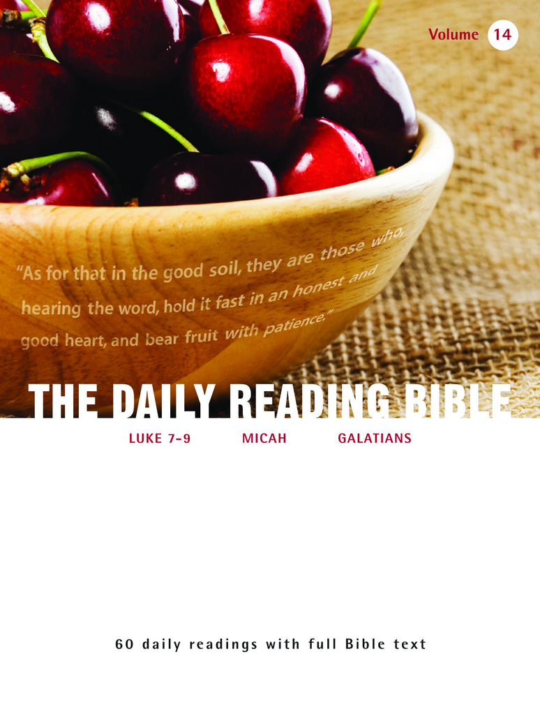 The Daily Reading Bible (Volume 14)