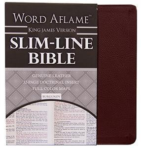 Slim Line Bible with Doctrinal Insert - KJV Burgundy Index