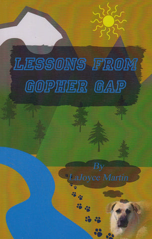 Lessons from the Gopher Gap