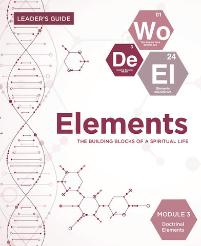 Elements Leader Guide - Module 3