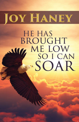 He Has brought Me Low so I Can Soar