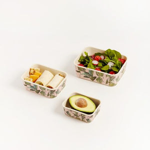 Monstera Nesting Container Set