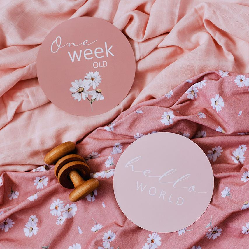 Daisy & Musk Pink Reversible Milestone Cards