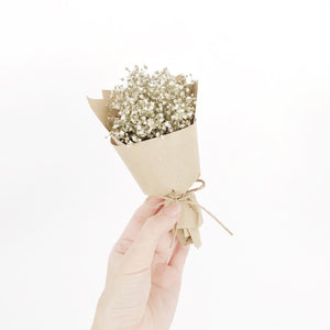Dried Mini Blooms (Baby's Breath)